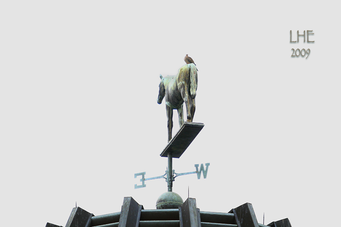 Bird On A Weather Vane
